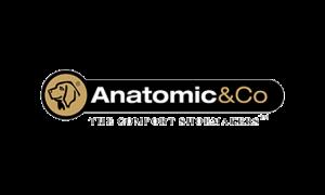 3007-anatomic